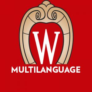 Multilanguage Icon